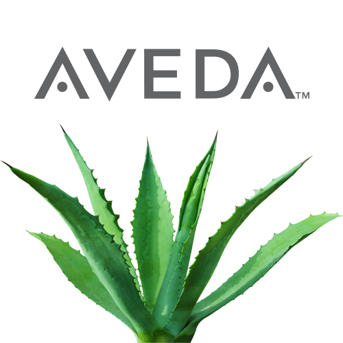 Aveda Concept Benefits - Home